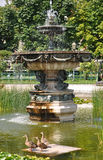 Volksgarten & x28; People& x27; s Garden& x29; в вене Стоковая Фотография