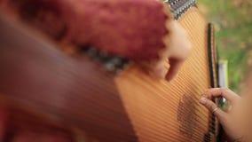 Volksinstrumenten Bandura stock video