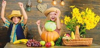 Volksschulefallfestivalidee Herbsterntefest Kinderspiel-Gem?sek?rbiskohl Kinderm?dchenjunge stockbild