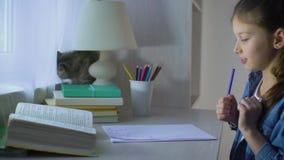 Volksschulemädchen, das Hausarbeit tun und ihre Haustierkatze, die in der Nähe auf Tabelle sitzt stock footage