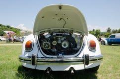 Volkswagen Beetle Стоковые Фото
