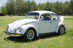 Volkswagen Beetle Стоковая Фотография