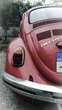 Volkswagen Beetle 1974 Стоковые Фотографии RF