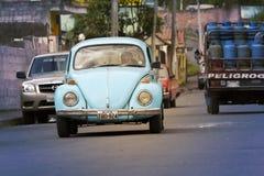 Volkswagen Beetle Royalty-vrije Stock Afbeeldingen