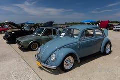 1964 Volkswagen Beetle Royalty-vrije Stock Afbeelding