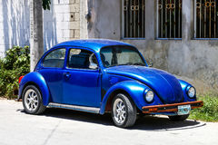 Volkswagen Beetle Стоковые Изображения