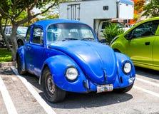 Volkswagen Beetle Стоковое Изображение