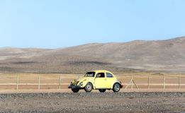 Volkswagen Beetle Stock Image