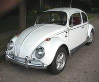 Volkswagen Beetle branco clássico Fotos de Stock Royalty Free