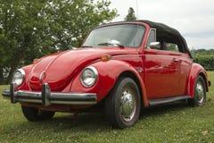 Volkswagen beetle convertible stock photo
