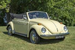 Volkswagen beetle convertible stock image
