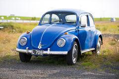 Volkswagen Beetle - Kaefer - Bug retro car Royalty Free Stock Photo