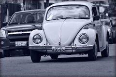 Volkswagen Beetle Monochrome Royalty Free Stock Photography