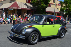 Volkswagen Bugs Stock Photography