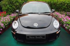 Volkswagen new beetle Royalty Free Stock Photos
