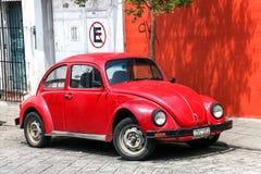 Volkswagen skalbagge Royaltyfria Bilder