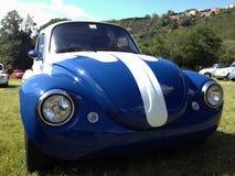 Volkswagen typ 1 Maggiolino Bettle Royaltyfri Fotografi