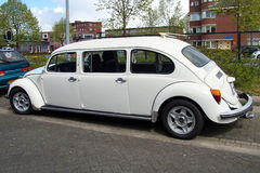 Volkswagen (VW) skalbaggelimousine - sträckt Limo royaltyfri bild