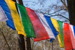 volkswagens kwiecień 28 2017 Molitvennye flaga w parku przyjaźń: Volgograd, Baku w central park w Volgograd - Fotografia Royalty Free