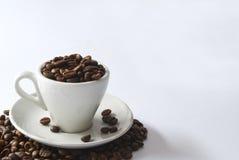 Voll vom Kaffee Lizenzfreies Stockfoto