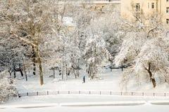 Voll vom Schnee Stockfotos