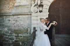 Voll vom stilvollen Bräutigam der Liebe mit blonder Luxusbraut auf dem backg Lizenzfreie Stockbilder