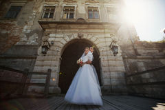 Voll vom stilvollen Bräutigam der Liebe mit blonder Luxusbraut auf dem backg Lizenzfreie Stockfotografie