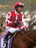 Vollblütiger Jockey Fernando Perez Lizenzfreie Stockbilder