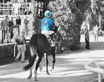 Vollblütiges Laufen von Belmont Park stockbilder