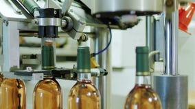 Volle automatisierte Fördererlinie in der Weinkellerei Schließt Flasche voll Wein stock video