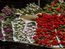 Volle Blumensträuße von Schnittblumen auf dem Markt Stockfotos