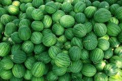 Volle Draufsicht der Wassermelone Lizenzfreies Stockfoto