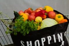 Volle Einkaufstasche Lebensmittelgeschäfte im Laufkatzendiagramm stockbilder