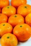 Volle Frucht der orange Tangerine Lizenzfreie Stockfotos