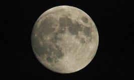 Volle maan stock afbeelding