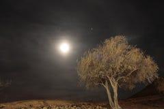 Volle maan bij Negev Woestijn, Heilig Land, Israël Royalty-vrije Stock Afbeelding