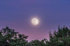 Volle maan bij schemeringhemel Royalty-vrije Stock Foto