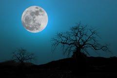 Volle maan in Donkerblauwe Hemel Stock Afbeeldingen