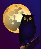 Volle maan en uil Royalty-vrije Illustratie