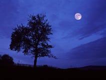 Volle maan ergens in Centrale Bohemen. Stock Afbeeldingen