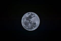 Volle maan op de donkere nacht Stock Afbeeldingen