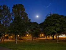 Volle maan over het park royalty-vrije stock fotografie