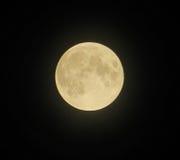 Volle maan in zwarte hemel Royalty-vrije Stock Afbeeldingen