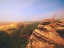 Volle maannacht met zonsopgang in een mooie berg van Boheems-Saksen Zwitserland Stock Afbeeldingen