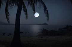 Volle maannacht over het overzees en het strand Stock Afbeeldingen
