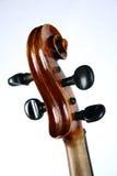 Volle Violine Stockfotografie