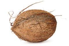 Volledig geroteerde kokosnoot Stock Fotografie