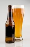 Volledig Glas Licht Bier met Fles Royalty-vrije Stock Fotografie