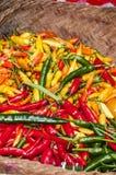 Volledig kader van rode, groene en gele peper stock afbeeldingen
