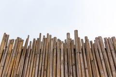 Volledig Kaderbeeld van Bamboe Stock Afbeelding